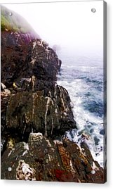 Northwest Coast-1 Acrylic Print by David Blank