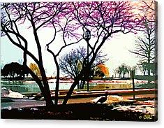 Northwestern U. Campus Acrylic Print