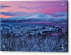 Norwegian Arctic Twilight Acrylic Print by David Broome