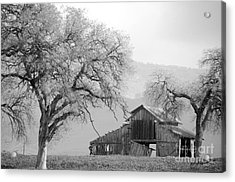 Not Much Time Left Bw Acrylic Print by Debby Pueschel