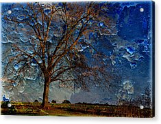 Nothing But Blue Skies Acrylic Print by Jan Amiss Photography