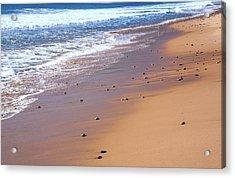 Nova Scotia, Beach Near The Cabot Acrylic Print