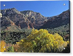 Acrylic Print featuring the photograph November In Sedona by Penny Meyers