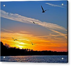 November Sunset Ia Acrylic Print by Frozen in Time Fine Art Photography