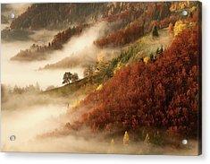 November's Fog Acrylic Print