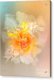 Nucleus Acrylic Print by Robert Foster