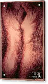 Nude Female Torso Drawings 1 Acrylic Print by Gordon Punt