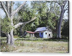 Nude Landscape Chiefland Florida Acrylic Print by Richard Barone