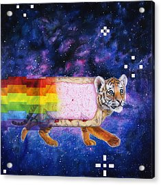 Nyantiger Nyancat Two Point Oh Acrylic Print by David Starr