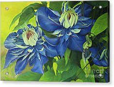 Acrylic Print featuring the painting O Clematis by Jeanette French