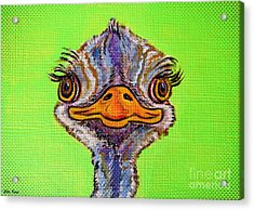O For Ostrich Acrylic Print