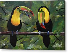 O Yeah Yeah Yeah -toucans Acrylic Print by Suzanne Schaefer