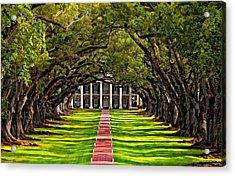 Oak Alley Paint  Acrylic Print by Steve Harrington