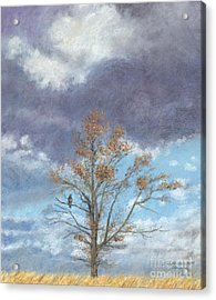 Oak And Clouds Acrylic Print by Jymme Golden