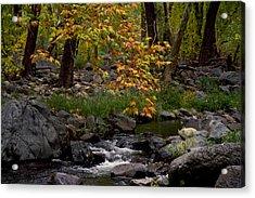 Oak Creek Canyon H Acrylic Print