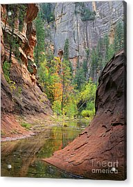 Oak Creek Canyon Acrylic Print by Timm Chapman