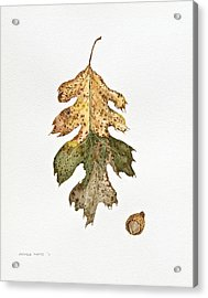 Acrylic Print featuring the painting Oak Study by Michele Myers