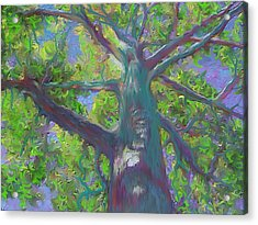 Acrylic Print featuring the painting Oak Tree 1 by Hidden  Mountain