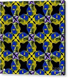 Obama Abstract 20130202p55 Acrylic Print