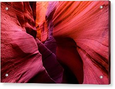 Obscure Escalante Acrylic Print by Chad Dutson
