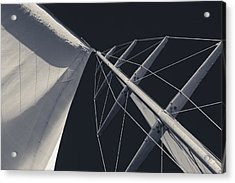 Obsession Sails 6 Black And White Acrylic Print