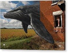 Obtain Bearing Acrylic Print by Mark Zelmer