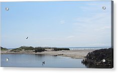 Acrylic Print featuring the photograph Ocean And Sound by Cathy Lindsey