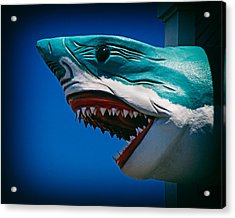 Ocean City Shark Attack Acrylic Print