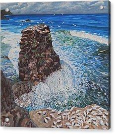 Ocean Dream Acrylic Print by Caroline Street