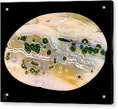 Ocean Jasper Cabochon Opus01 Acrylic Print by Rock Hound