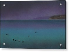 Ocean Of Glass With Seabirds Acrylic Print