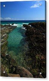Ocean Rockpool Acrylic Print by Noel Elliot