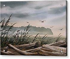 Ocean Shore Acrylic Print by James Williamson