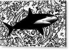 Ocean Surveyor - Prints By Robert Rodriguez Artist Acrylic Print