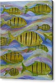 Ocean's Tide Acrylic Print