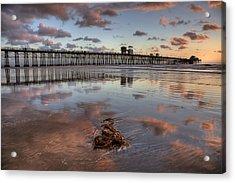 Oceanside Pier Seaweed Acrylic Print by Peter Tellone
