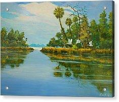 Ochlocknee River Acrylic Print by Michael Cook