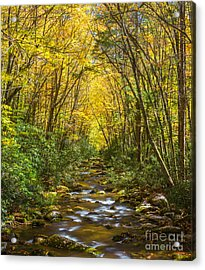 Acrylic Print featuring the photograph Oconaluftee Splendor by Carl Amoth