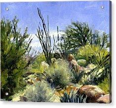 Ocotillo And Scrub Brush Acrylic Print by Stacy Vosberg