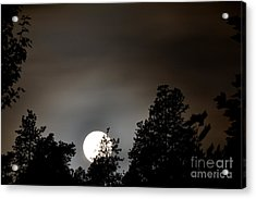October Full Moon I Acrylic Print by Phil Dionne