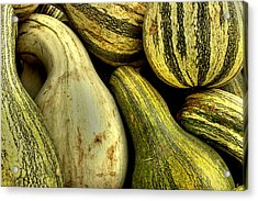 October Gourds Acrylic Print by Michael Eingle