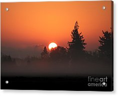 October Orange Acrylic Print