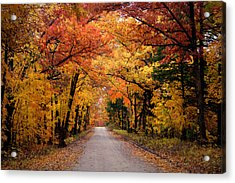 October Road Acrylic Print by Cricket Hackmann