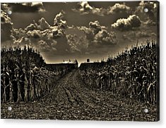 October Sky Acrylic Print by Robert Geary