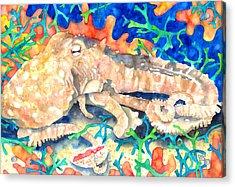 Octopus Delight Acrylic Print