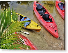 Odd Boat Out Acrylic Print by Chuck  Hicks