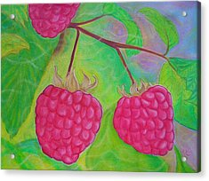 Ode To A Raspberry Acrylic Print by Rachel Cruse