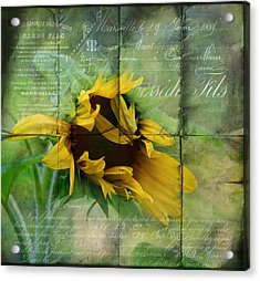 Ode To Summer Acrylic Print