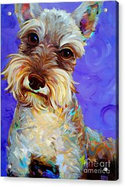 Odie Acrylic Print by Robert Phelps