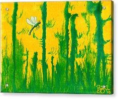 Odonata Acrylic Print by Lance Bifoss